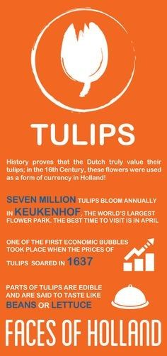 Dutch icons in advertising and travel – tulips.
