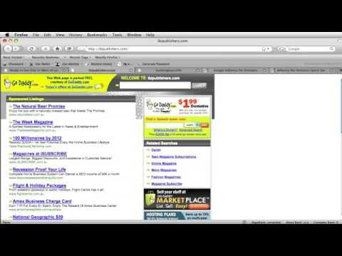 $3 5 Million With Google Adsense For Domains Chapter 2