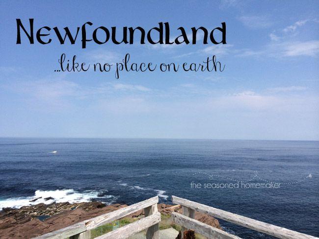 Newfoundland is a little like Middle Earth. I call it The Edge of Tomorrow - The Seasoned Homemaker