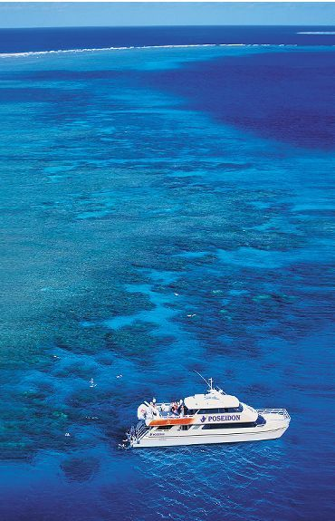 Snorke lDive Poseidon Reef Cruises the Great Barrier Reef with Poseidon Reef Cruises Port Douglas Cairns Palm Cove