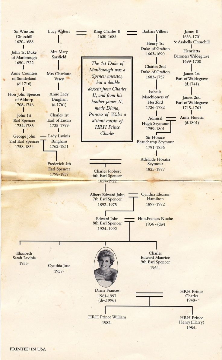 Princess Diana Family Tree