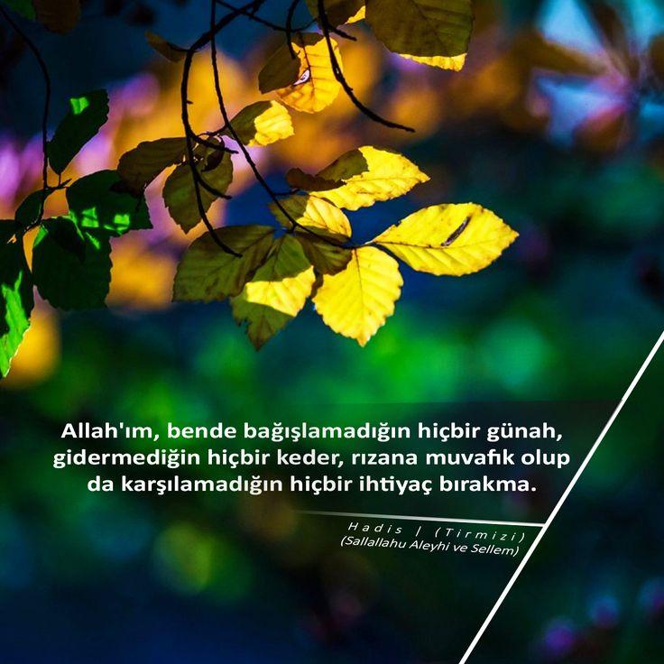 Allah'ım, bende bağışlamadığın hiçbir günah, gidermediğin hiçbir keder, rızana muvafık olup da karşılamadığın hiçbir ihtiyaç bırakma.  Hadis | (Tirmizi) (Sallallahu Aleyhi ve Sellem)