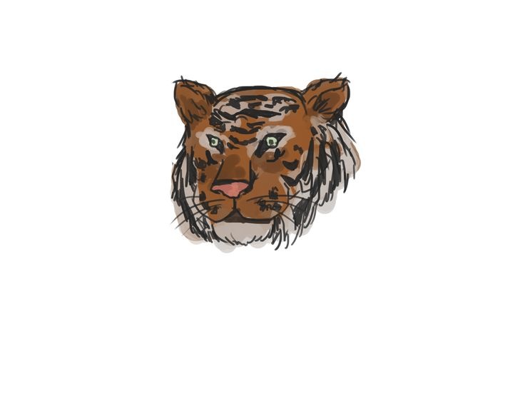 How+to+Draw+a+Tiger. I did it with my son, and the result can be really defined as tiger!