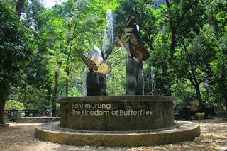 Bantimurung National Park - The Kingdom of Butterfly - Nusaku