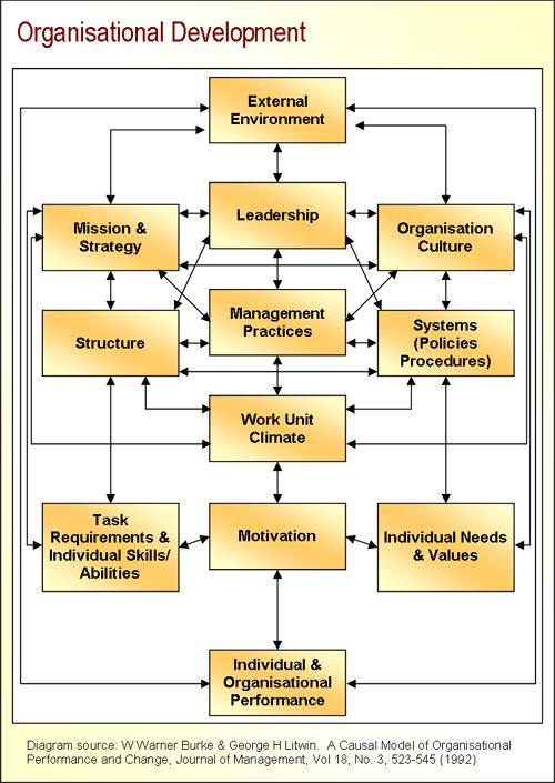 Organizational Change And Development Diagnostic Model For Team Building