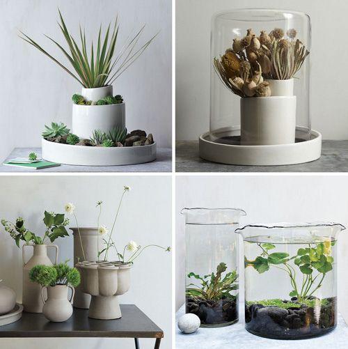 plants + plants + plants