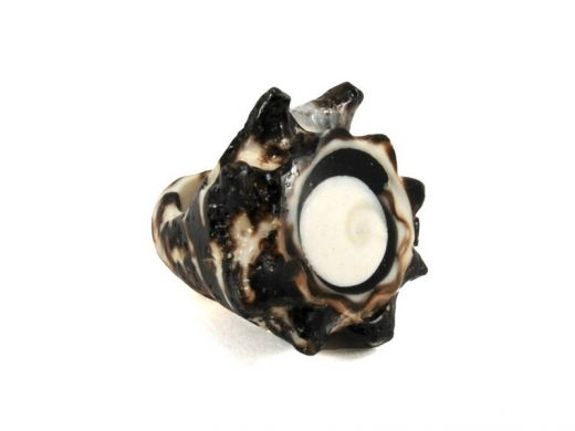 Ring of shells http://www.etnobazar.pl/search/ca:bizuteria-i-dodatki?limit=128