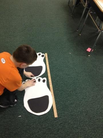 Rekenen: Meten met ijsbeerpoten. Je kunt verschillende dierenpoten hiervoor gebruiken. Bijvoorbeeld de verschillende poten uit de gruffalo en dan vergelijken