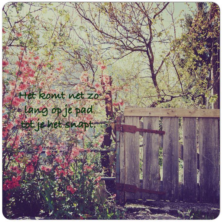Het komt net zo lang op je #pad tot je het snapt