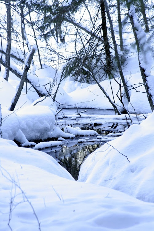 Nuuksio Nationalpark, Espoo, Finland