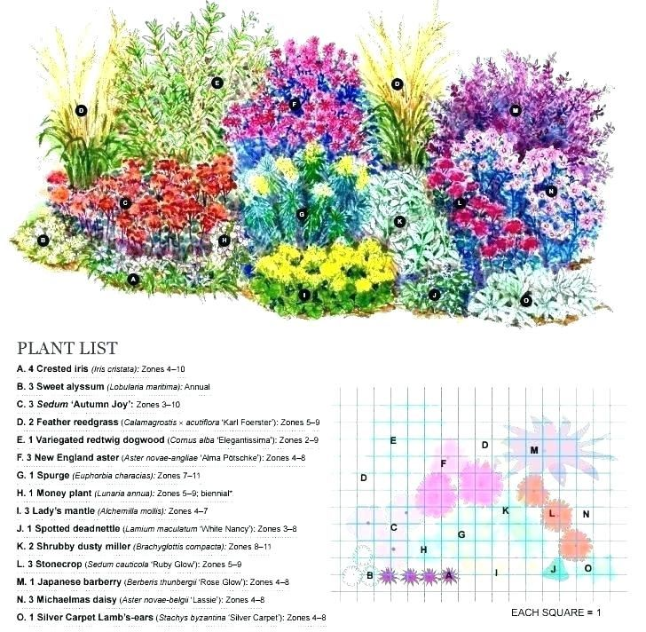 shade shrubs zone 4 garden 5 perennial plans filled with a ...