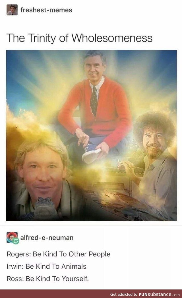 The Trinity Of Wholesomeness Steve Irwin Bob Ross Mr Rogers Uplifting Memes Bob Ross Bob Ross Funny