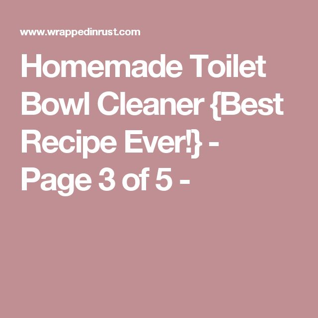 Homemade Toilet Bowl Cleaner {Best Recipe Ever!} - Page 3 of 5 -