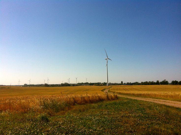 turbina wiatrowa/wind turbine