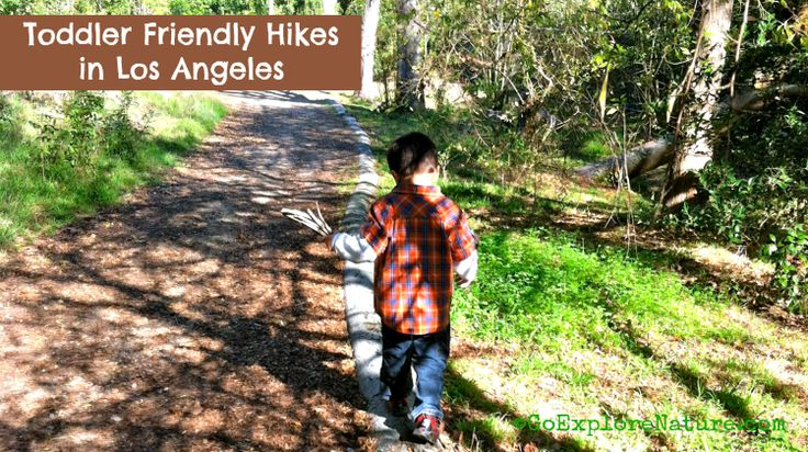 These toddler friendly hikes in Los Angeles are short, safe, fun & interesting for kids.