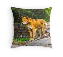 Dingo on the Alert Throw Pillow