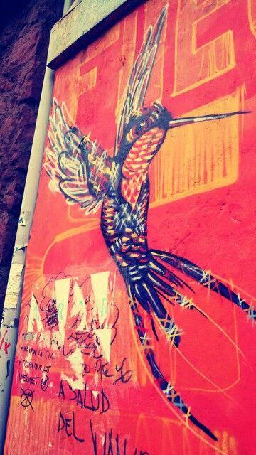 Colibri - mural