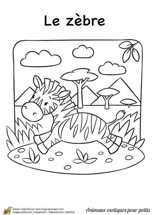 18 best zebre images on pinterest wild animals activities for kids and fine motor - La savane dessin ...