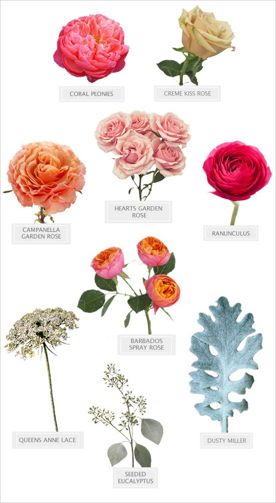 spring flowers recipe for the perfectly pink DIY bouquet #diy #bouquetrecipe #weddingchicks http://www.weddingchicks.com/2014/03/19/perfectly-pink-wedding-bouquet-recipe/