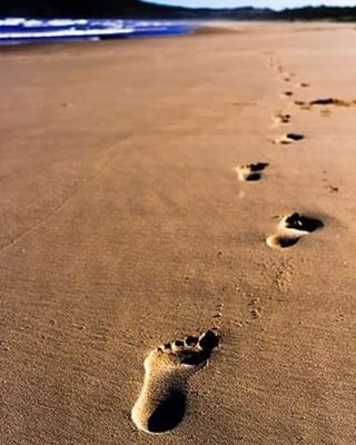 This reminded me of that oldie but goodie poem Footprints that people pull out in times of hardship for a sense of comfort. #notmyfootprints _ #beach #sand #footprints #ocean #water#australia #wow_australia #instatravel #travelgram #nsw #delicate #newsouthwales #seeaustralia #igtravel #sharetravelpics #worldtravelpics #wanderlust #CanonAustralia #AvisRoadtrip #australia_shotz @australia #iloveaustralia #my_365_two_tone