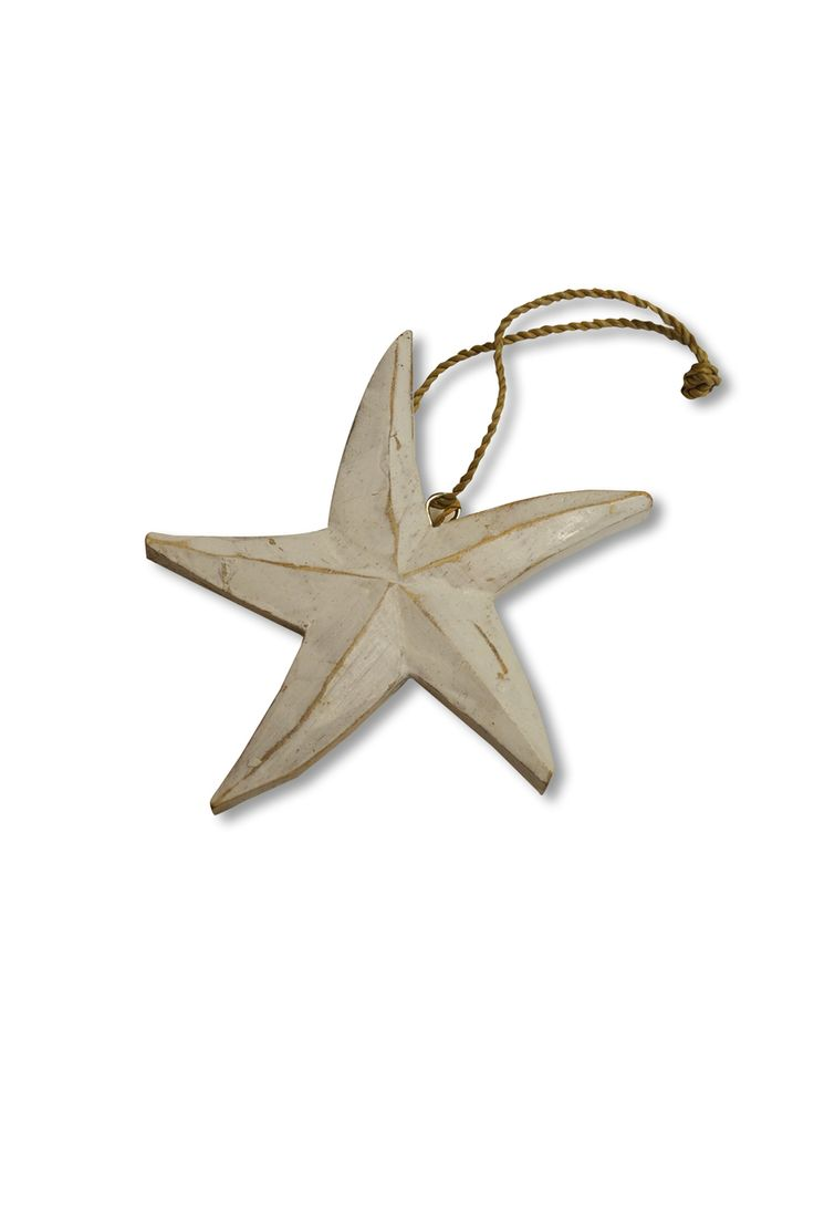 White Wash Holiday Starfish Ornament - loggerhead