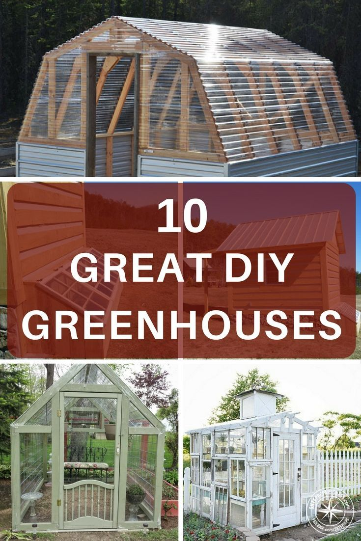 10 Great DIY Greenhouses - The author has compiled some great models from different locations across the internet. There are also some great greenhouses available on amazon for just over one hundred dollars. If you have a desire to make the jump into a greenhouse finding a greenhouse that works for you and your needs is very important.