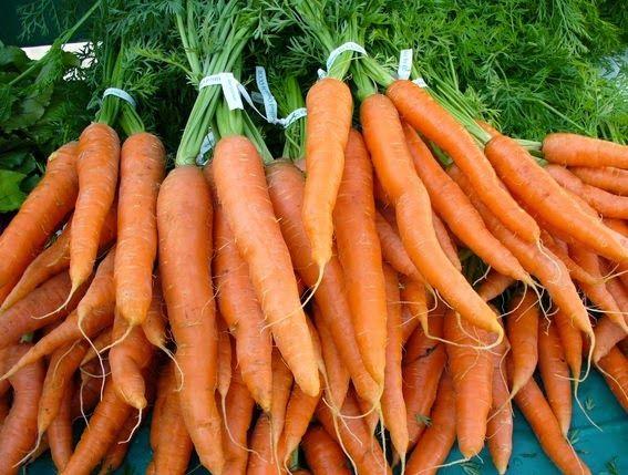 manfaat-wortel-mentah-bagi-ibu-hamil