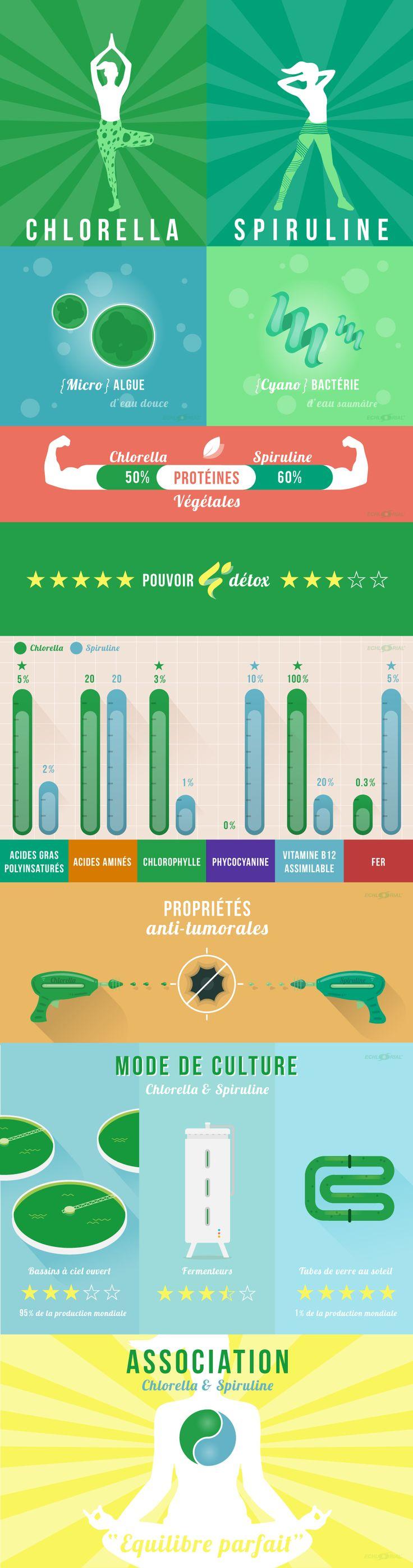 Infographie : différences et similitudes entre Chlorella et Spiruline
