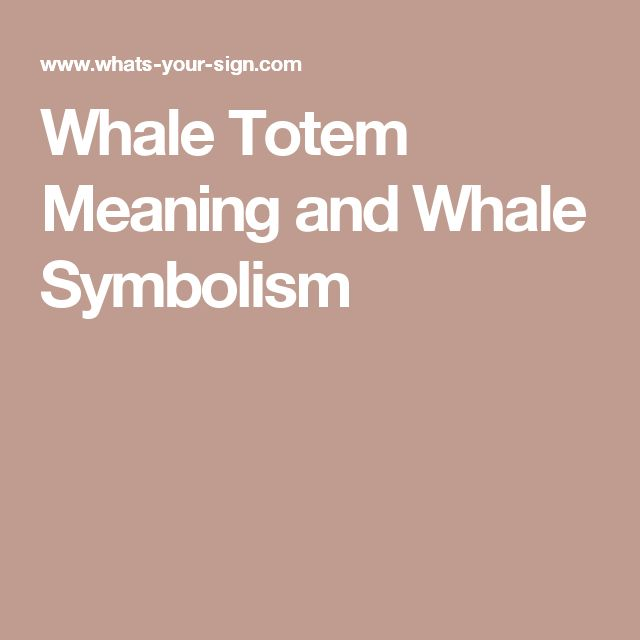 Whale Totem Meaning and Whale Symbolism