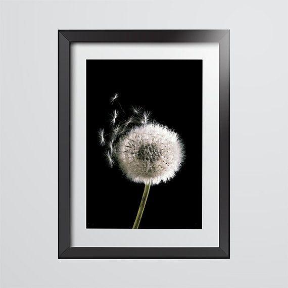 Dandelion Macro photography. Minimalist flower by BekareCreative