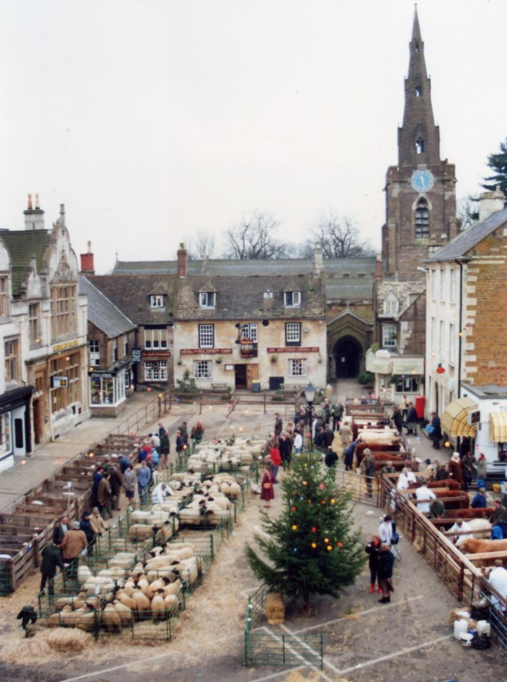 The annual Christmas Fatstock Show in the Market Place at Uppingham in Rutland.  Rutland is a landlocked county in central England, bounded on the west and north by Leicestershire, northeast by Lincolnshire and southeast by Northamptonshire.