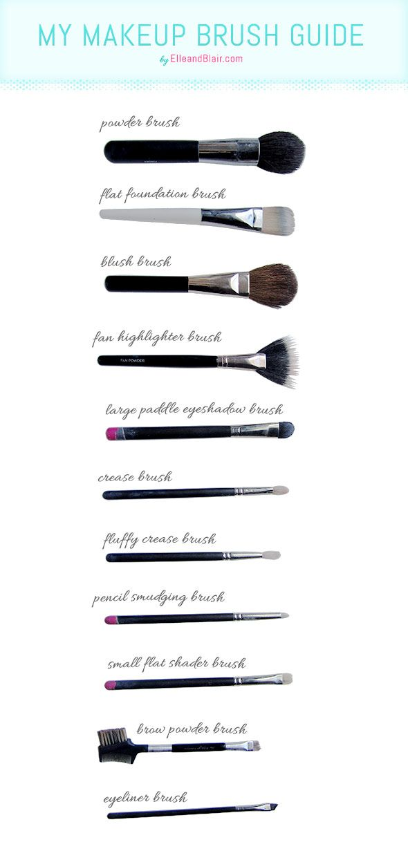 The makeup brushes you really need...and how to use them