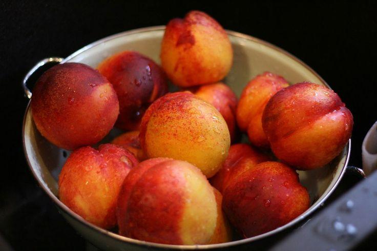 fresh nectarines: Fresh Nectarine, Nectarine 1Kg