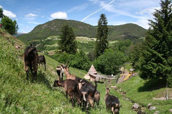 camping bij de Seiser Alm, in Süd-Tirol, superluxe met mooie afgelegen plaatsjes