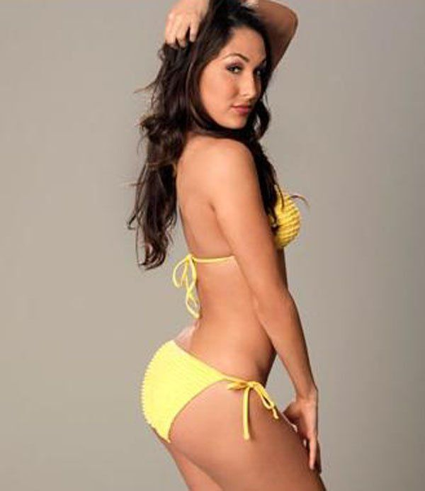 Brie Bella Sexy Images