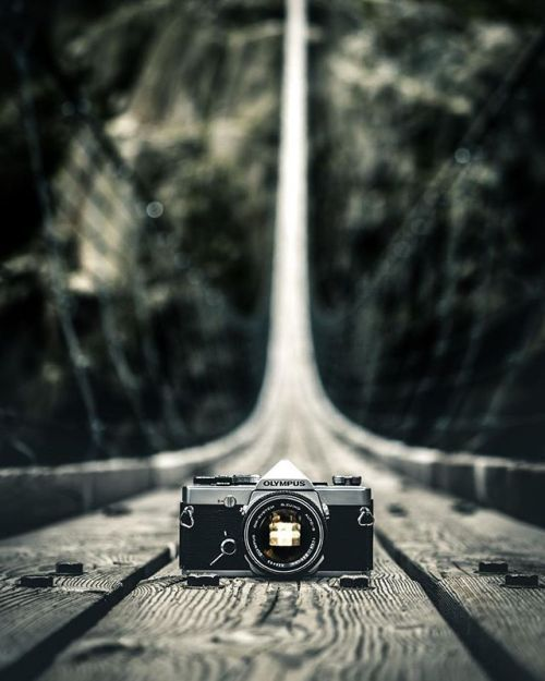 Mein beliebtestes Bild neu inszeniert mit einer analogen OLYMPUS OM-1. #takeover OLYMPUS Visionary @diaryofseya . . OM-D E-M1 Mark II | M.Zuiko 40-150mm 1:2.8 PRO | F2.8 | ISO 64 | 1/1000 | via Olympus on Instagram - #photographer #photography #photo #instapic #instagram #photofreak #photolover #nikon #canon #leica #hasselblad #polaroid #shutterbug #camera #dslr #visualarts #inspiration #artistic #creative #creativity