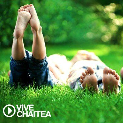 Nada mejor que acostarse en el pasto con una buena compañía. ¡Vive Chaitea!