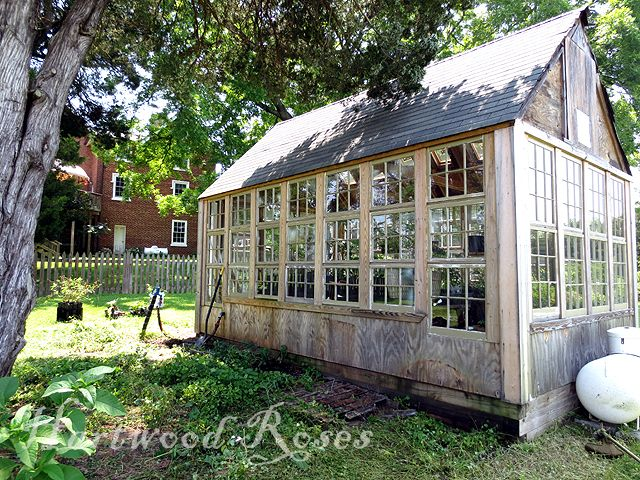 Recycle windows into a killer greenhouse.