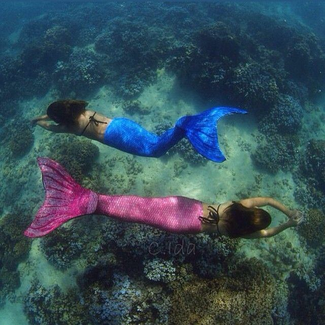 Amazing shot by @cory_ida! Two Fin Fun mermaids swimming in Hawaii. Talk about dreams coming true!! Shop Finfun.com to make your mermaid dreams come true! Fin Fun tails featured Crystal's Arctic Blue and Waverlee's Malibu Pink. #finfun #mermaids #mermaidt