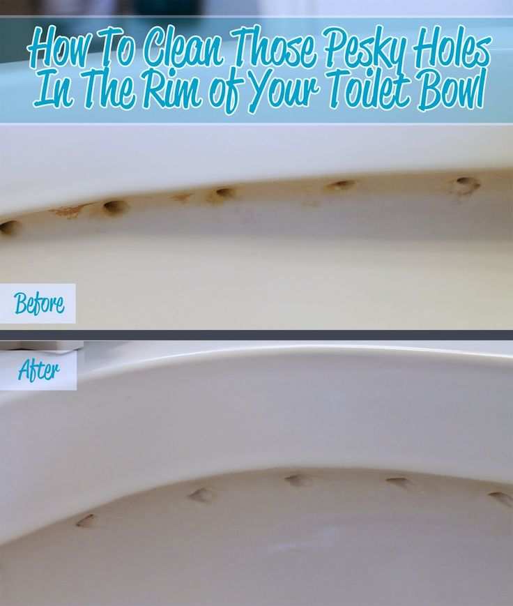 How to easily clean the holes in the rim of your toilet. Bathroom will smell cleaner and toilet will stay clean longer.