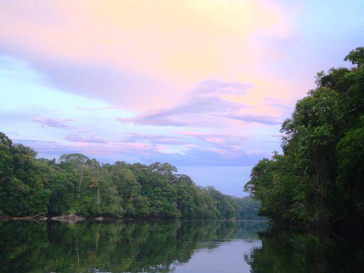 Atardecer en el caño Cuduyari, afluente del rio Vaupes.