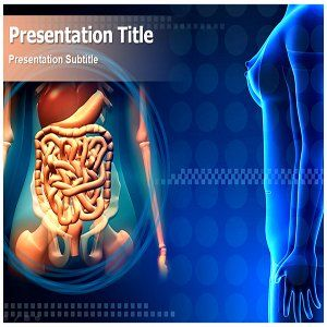 Digestive System Powerpoint Template - Digestive System Powerpoint (PPT) Template