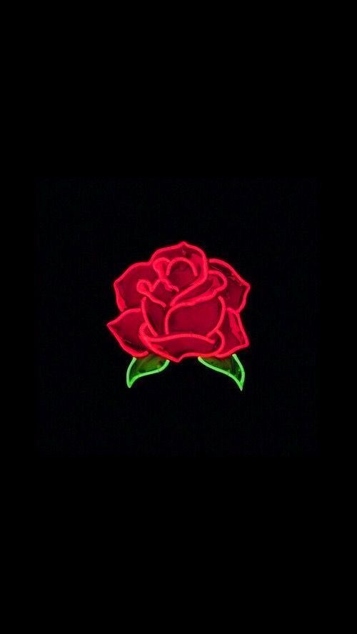Glowing Deep Red Rose Bkgrndz Obstanovka In 2019 Iphone