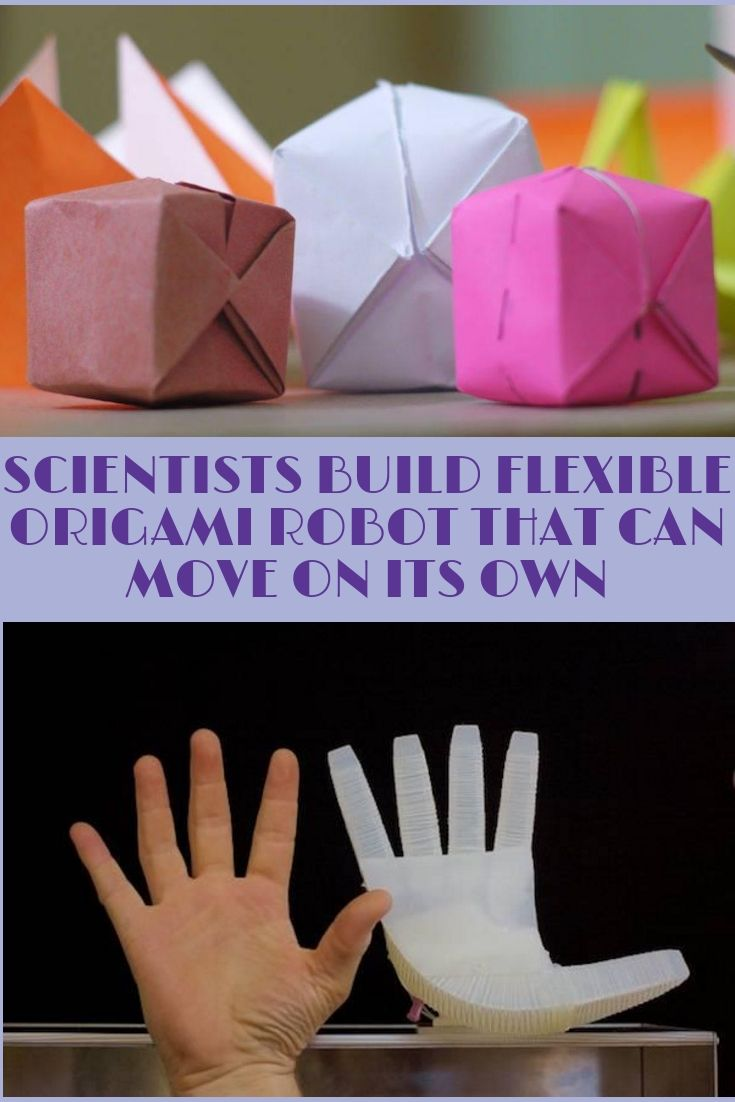 Scientists Build Flexible Origami Robot That Can Move On Its Own