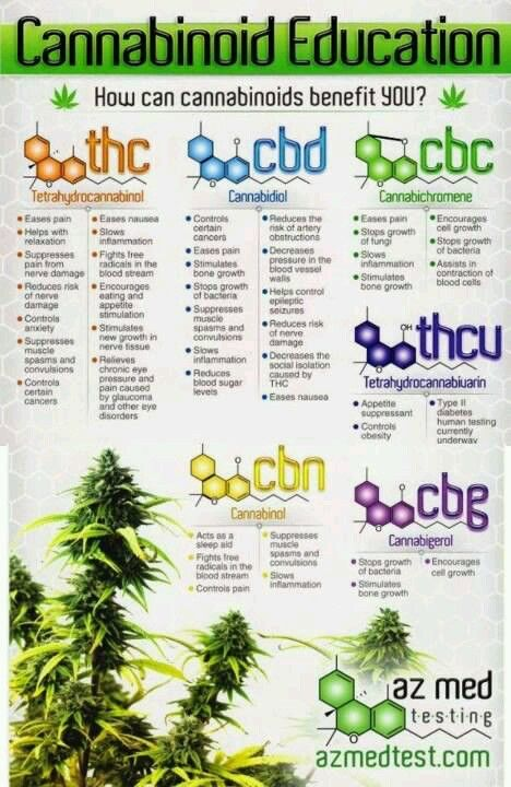 CBD can stand alone, but there are many parts of cannabis that heal - matter of fact ALL of cannabis heals better than drugs.