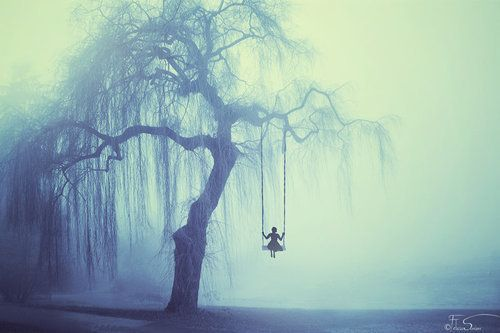 Willow Tree in Fog - Girl Swinging