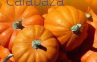 Propiedades de la #Calabaza | Alimentos y Salud