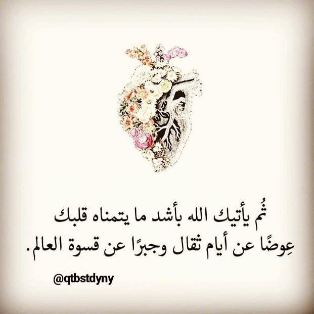 عبر وحكم Islamic Phrases Beautiful Arabic Words Arabic Quotes