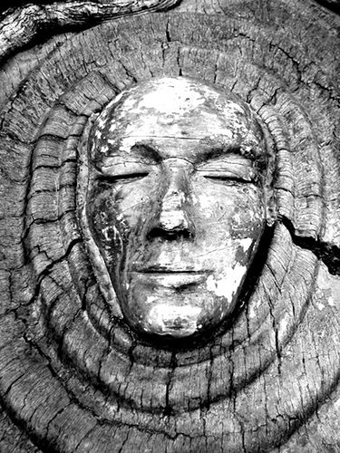 'Tree Spirit' carving on a live oak in Saint Simons Island, Georgia