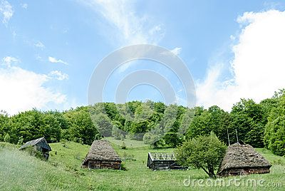 Four traditional buildings on a hill side in Transylvania. The building technology consists of wood beams walls and straw thatched roofs.
